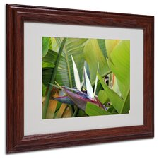 "<strong>Trademark Fine Art</strong> ""Paradise 2"" Matted Framed Art"