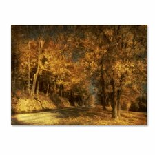 "<strong>Trademark Fine Art</strong> ""Back Roads"" Canvas Art"