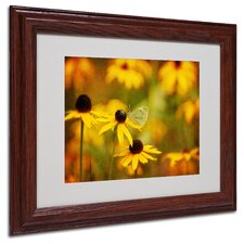 "<strong>Trademark Fine Art</strong> ""Abundance"" Matted Framed Art"