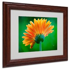 "<strong>Trademark Fine Art</strong> ""Orange Burst"" Matted Framed Art"