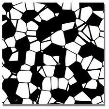 <strong>Trademark Fine Art</strong> 'Crystals of Black and White' Canvas Art