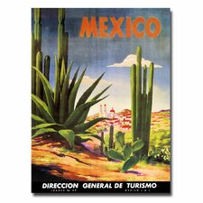 <strong>Trademark Fine Art</strong> 'Mexico Cacti' Canvas Art