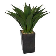 "44"" Realistic Giant Aloe Plant in Contemporary Planter"