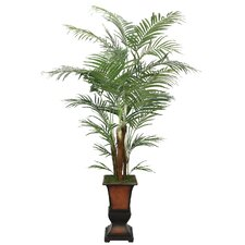 Realistic Areca Palm Tree in Urn