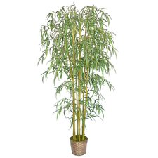 <strong>Laura Ashley Home</strong> Silk Bamboo Tree in Basket