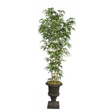 Tall Bamboo Tree in Fiberstone Planter