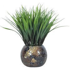 Grass in Round Mosaic Pot (Set of 2)