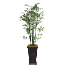 <strong>Laura Ashley Home</strong> Tall Bamboo Tree in Decorative Vase