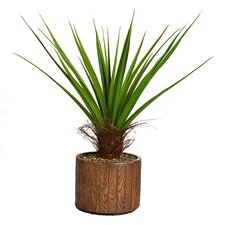 <strong>Laura Ashley Home</strong> Tall Agave Floor Plant in Cylinder Fiberstone Pot