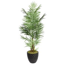 Tall Areca Palm Tree in Fiberstone Planter