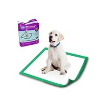 Disposable Potty Pad (Set of 20)