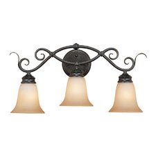 <strong>Millennium Lighting</strong> 3 Light Bath Vanity Light