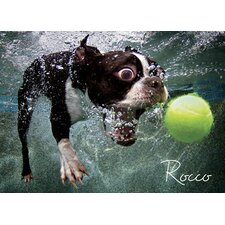 <strong>Willow Creek Press</strong> Underwater Dogs: Rocco Puzzle