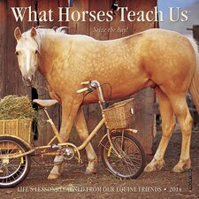 What Horses Teach Us 2014 Mini Calendar