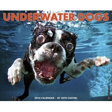 <strong>Willow Creek Press</strong> Underwater Dogs 2014 Wall Calendar
