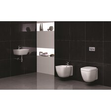 Elena Wall Hung Cloakroom Suite