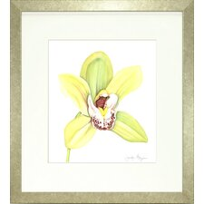 Floral Living Orchid Beauty 2 Framed Graphic Art