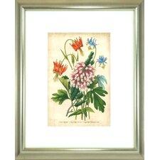 Floral Living Summer Medley VI Framed Graphic Art