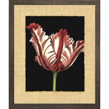 Floral Living Vibrant Tulips II Framed Painting Print