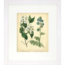 <strong>Indigo Avenue</strong> Floral Living Cottage Florals I Framed Wall Art