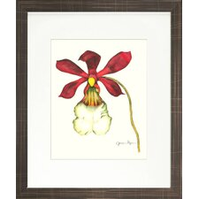 Floral Living Magestic Orchid II Framed Graphic Art