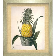 <strong>Indigo Avenue</strong> Seaside Living The Queen Pineapple Framed Wall Art