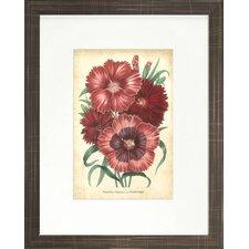 Floral Living Summer Medley II Framed Graphic Art