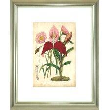Floral Living Summer Medley V Framed Painting Print