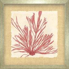 Seaside Living Brilliant IX Framed Graphic Art in Seaweed Red
