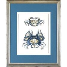 Seaside Living Crab One Framed Graphic Art