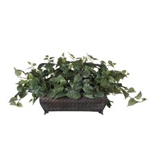 <strong>House of Silk Flowers Inc.</strong> Artificial Philo Ledge Desk Top Plant in Planter