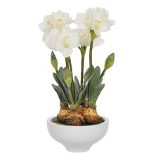 Artificial Amaryllis in Pot