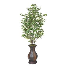 Artificial Ficus Tree in Decorative Vase