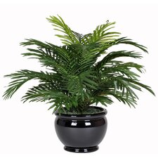 Artificial Parlor Fern in Fishbowl Vase