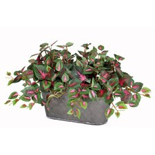Artificial Mini Coleus Desk Top Plant in Planter