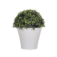 Artificial Half Ball Boxwood Topiary in Pot