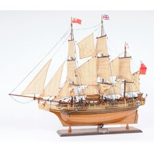 HMS Bounty New Model Boat