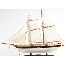 Lynx Painted Model Boat