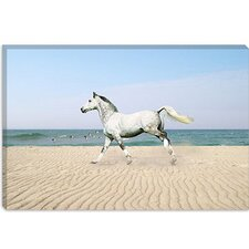 "<strong>iCanvasArt</strong> ""White Horse on the Beach"" Canvas Wall Art by Bob Langrish"