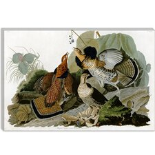 "<strong>iCanvasArt</strong> ""Ruffed Grouse"" Canvas Wall Art by John James Audubon"