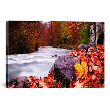 'Autumn Flow' by Dan Ballard Photographic Print on Canvas
