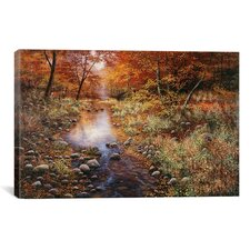 'Autumn Gold' by Bill Makinson Photographic Print on Canvas