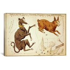 'Canis Major, Lepus, Columba Noachi, and Cela Sculptoris' by Sidney Hall Graphic Art on Canvas