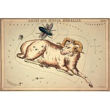 'Aries and Musca Borealis, 1825' by Sidney Hall Graphic Art on Canvas