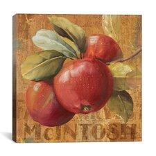 """Apple Season"" Canvas Wall Art by Lisa Audit"