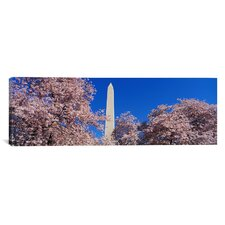 Panoramic Cherry Blossoms Washington Monument Photographic Print on Canvas
