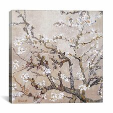 'Almond Branches' by Vincent Van Gogh Painting Print on Canvas