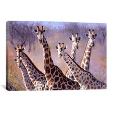 Giraffes by Pip McGarry Painting Print on Canvas