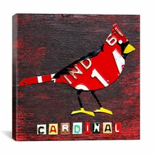"""""""Indiana Cardinal"""" Canvas Wall Art by David Bowman"""