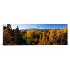 Panoramic Mt. Hood National Forest, Oregon Photographic Print on Canvas